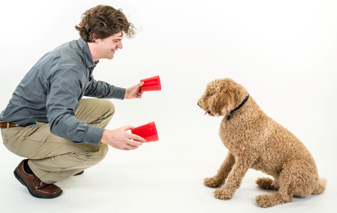 Dognition-Two-Cups